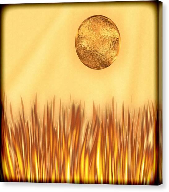 Golden Summers Canvas Print