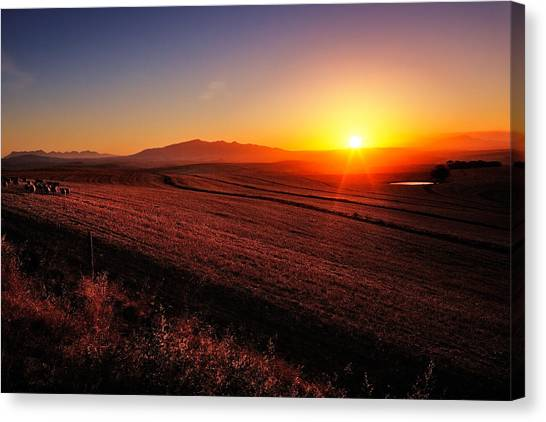Hay Bales Canvas Print - Golden Sunrise Over Farmland by Johan Swanepoel