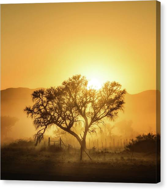 Sunrise Canvas Print - Golden Sunrise by Piet Flour