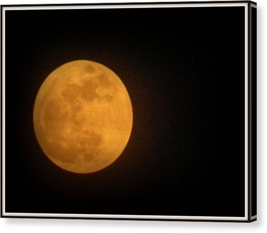 Golden Super Moon Canvas Print