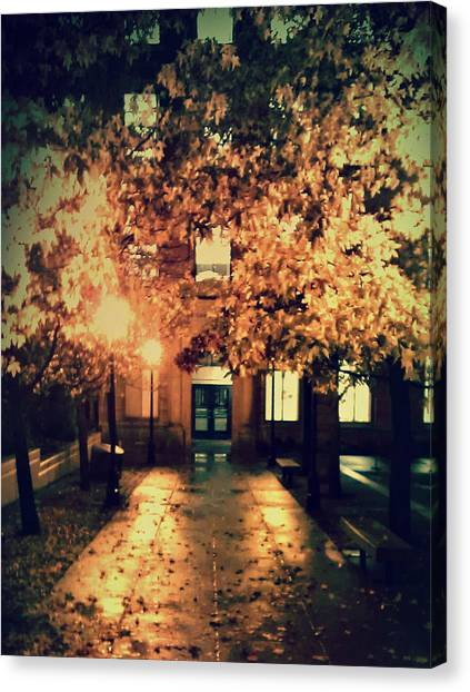 Washington State University Canvas Print - Golden Trees by Taylor Brock