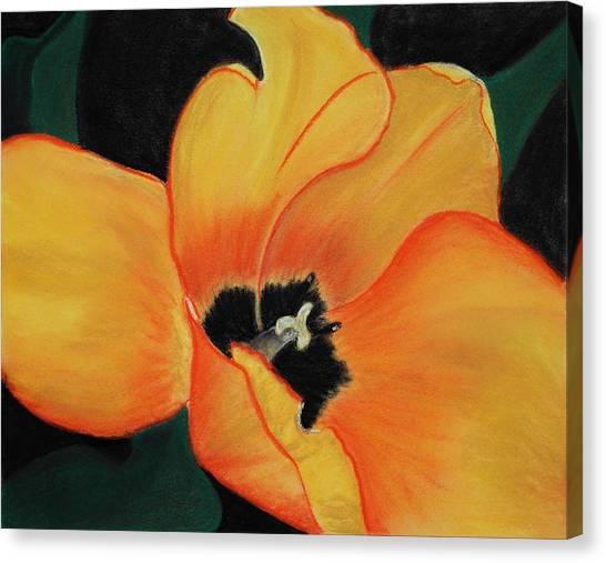 Close-up Canvas Print - Golden Tulip by Anastasiya Malakhova