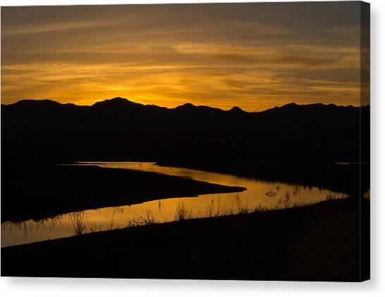 Golden Wetland Sunset Canvas Print