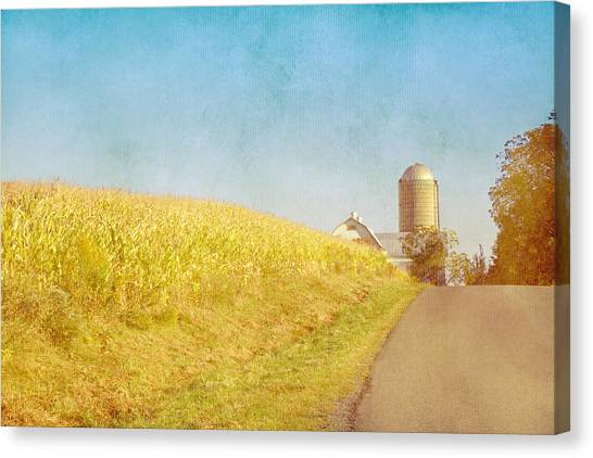 Golden Yellow Cornfield And Barn With Blue Sky Canvas Print