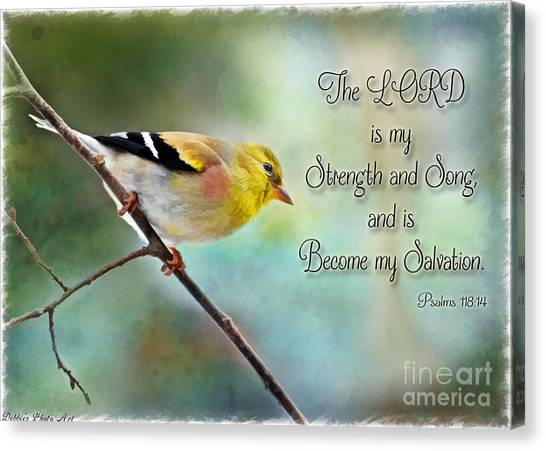 Goldfinch With Rosy Shoulder - Digital Paint And Verse Canvas Print