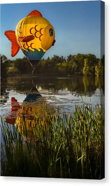 Goldfish Reflection Canvas Print