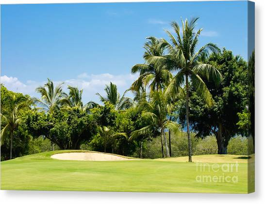 Golf Course Canvas Print - Golf Course by Aged Pixel