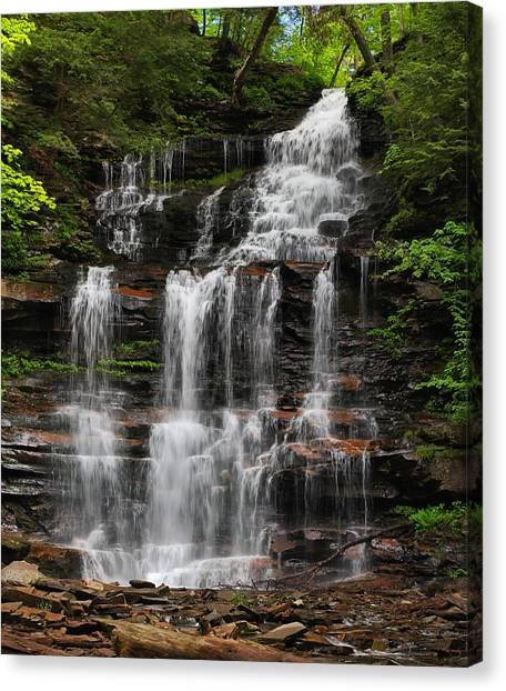 Gonoga Falls Canvas Print