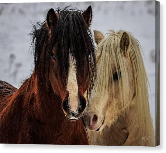 Ponies Canvas Print - Good Friends by Everet Regal