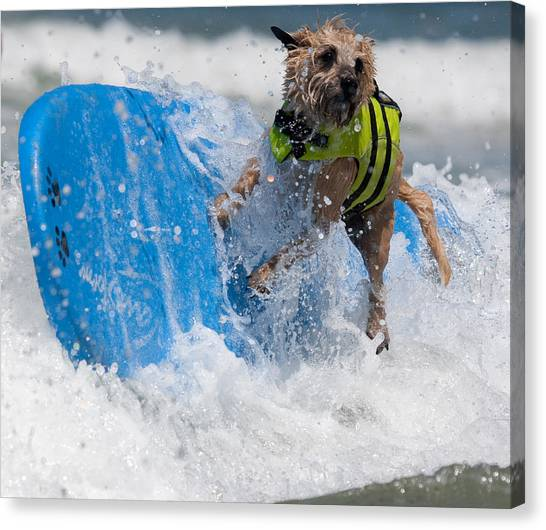 Good Thing I Have This Life Vest Canvas Print