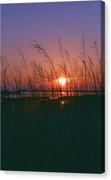 Goodnight Sun Canvas Print
