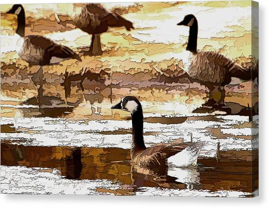 Goose Abstract Canvas Print