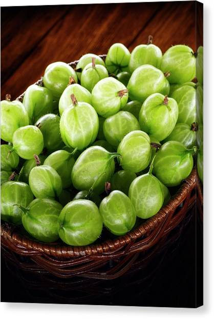 University Of Virginia Canvas Print - Gooseberries In A Basket by Patrick Llewelyn-davies/science Photo Library