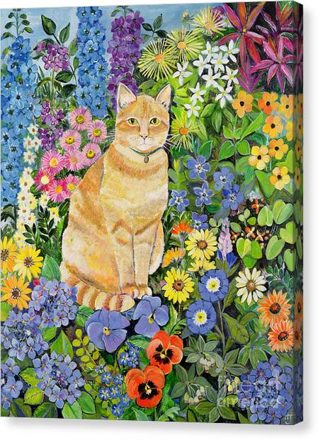Susan Canvas Print - Gordon S Cat by Hilary Jones