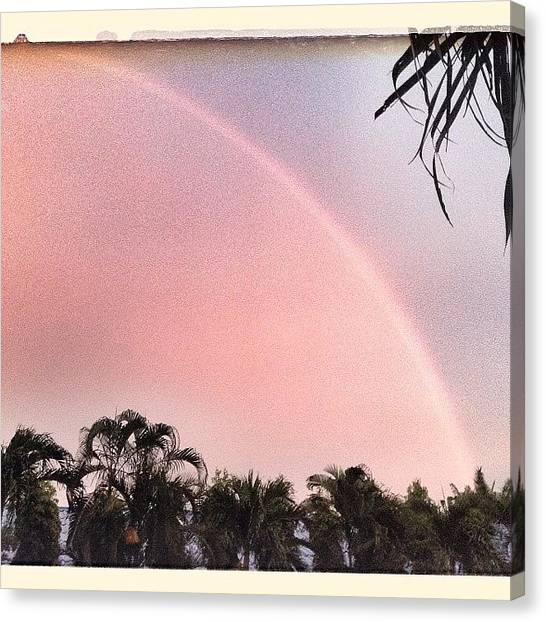 Palm Trees Canvas Print - Gorgeous Sunset Rainbow by Candace Fowler