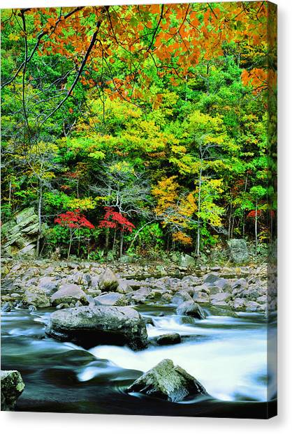Goshen Pass And Maury River Canvas Print by Bijan Pirnia
