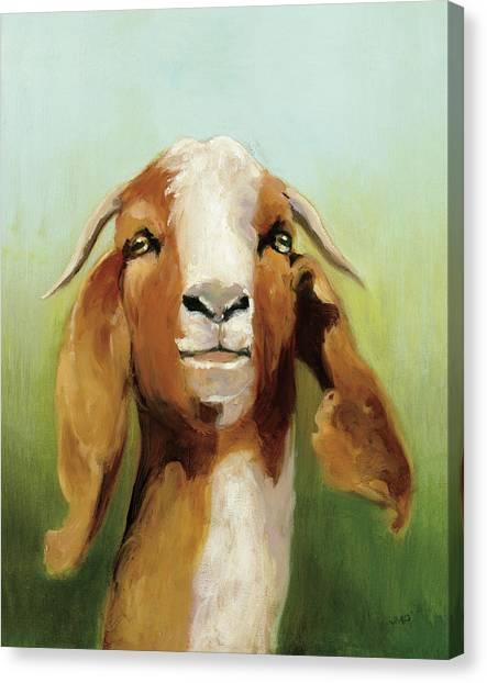 Goats Canvas Print - Got Your Goat V2 by Julia Purinton