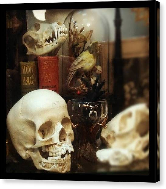 Steampunk Canvas Print - Gothic Curio by Rachel Waters