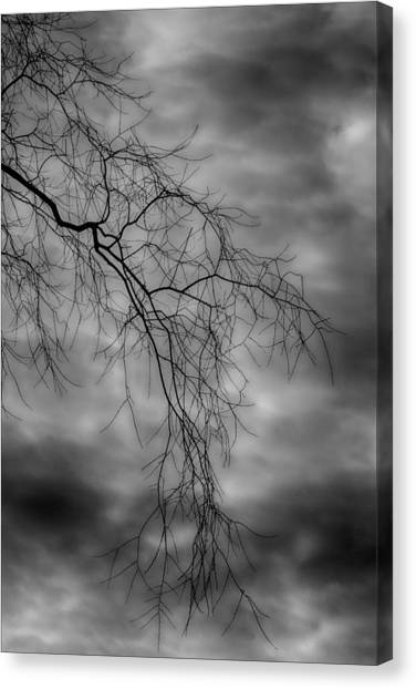 Gothic Sky Canvas Print by Robert Ullmann