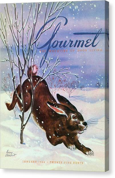 Gourmet Cover Of A Rabbit On Snow Canvas Print