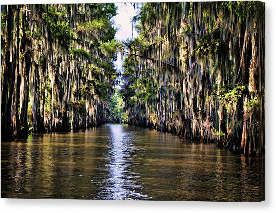 Bayous Canvas Print - Government Ditch by Lana Trussell
