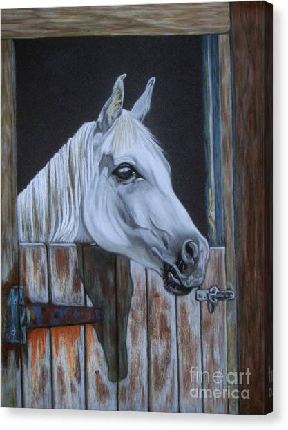 Grace At The Stable Door Canvas Print