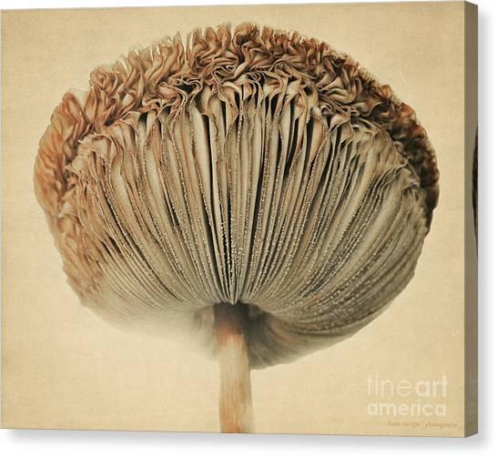 Grace Under Mushroom Canvas Print