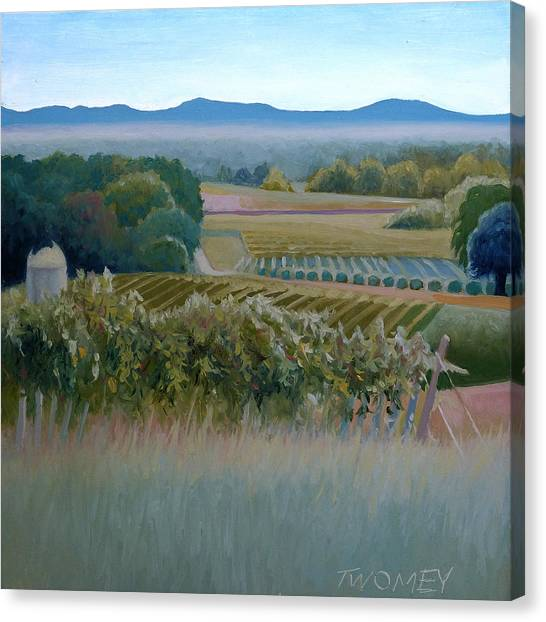 Grace Vineyards No. 1 Canvas Print