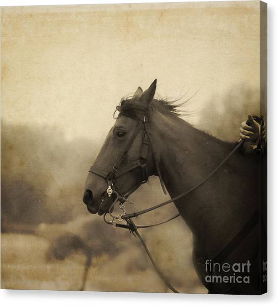Graceful Beauty Canvas Print
