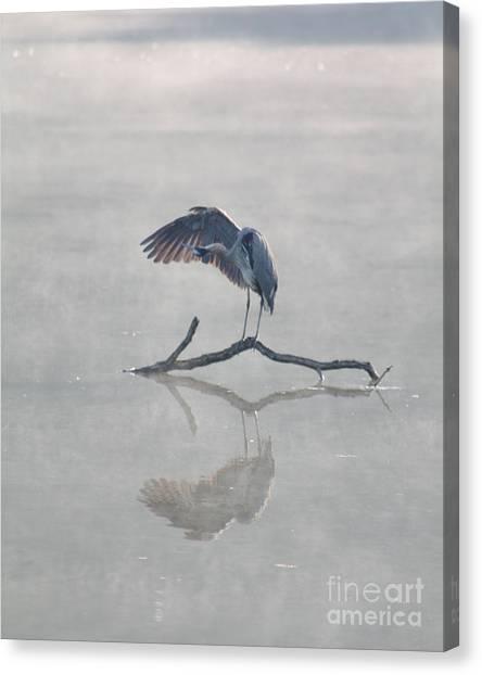 Graceful Heron Canvas Print