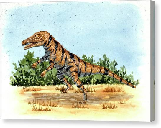 Gracilisuchus Prehistoric Crocodile Canvas Print by Deagostini/uig
