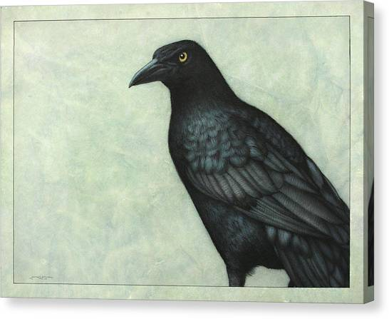 Ravens Canvas Print - Grackle by James W Johnson