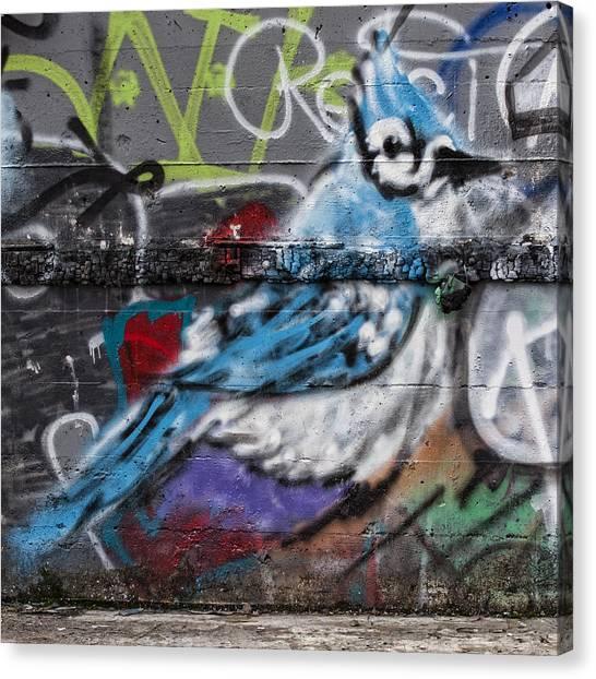 Bluejays Canvas Print - Graffiti Bluejay by Carol Leigh