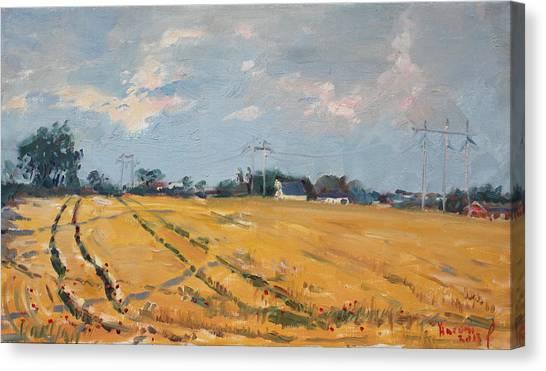 Countryside Canvas Print - Grain Field by Ylli Haruni