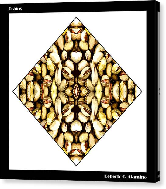 Grains Canvas Print by Roberto Alamino