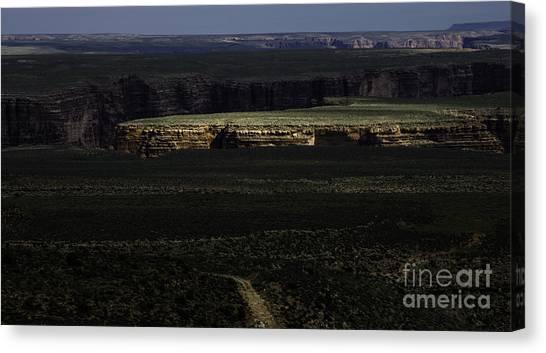 Grand Canyon 12 Canvas Print by Richard Mason