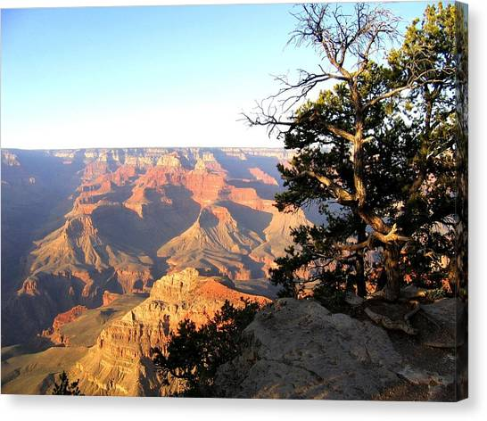 Grand Canyon 63 Canvas Print