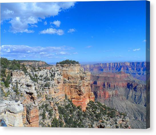 Grand Canyon North Rim Canvas Print