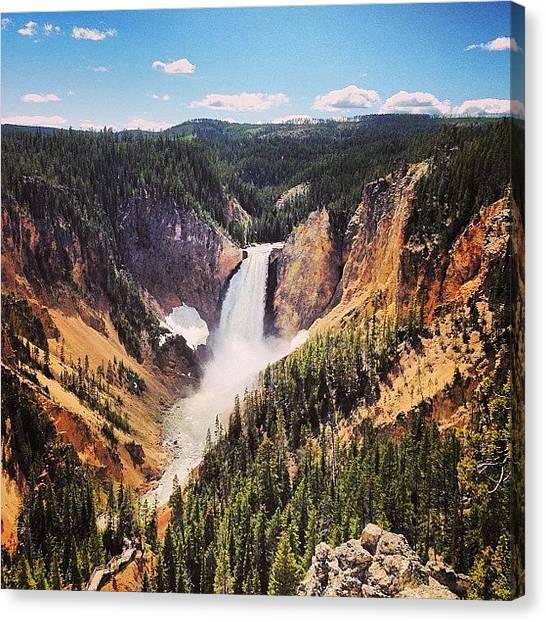 Yellowstone National Park Canvas Print - #grand #canyon Of #yellowstone #ysnp by Ankur Agarwal