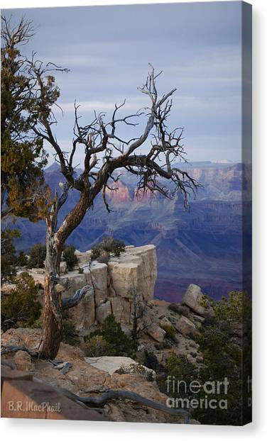 Grand Canyon Overlook Canvas Print