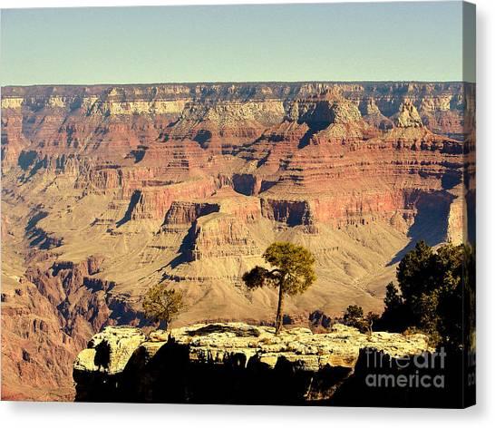 Grand Canyon Usa Canvas Print by John Potts