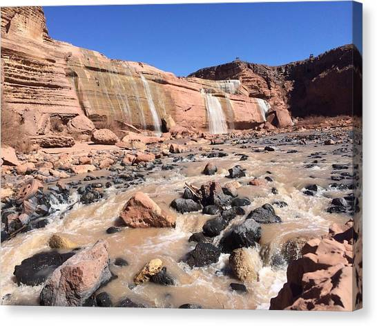 Grand Canyon Canvas Print -  Grand Falls On The Navajo Reservation  by Julie Smith