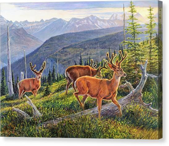 Granite Park Bucks Canvas Print