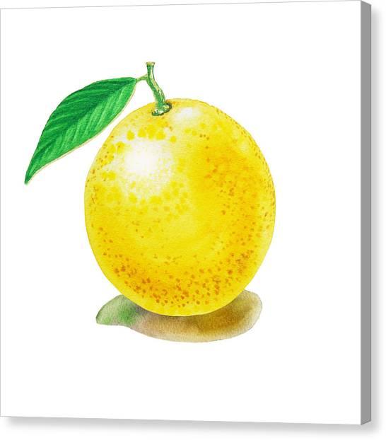 Grapefruits Canvas Print - Grapefruit by Irina Sztukowski