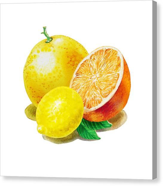 Grapefruit Canvas Print - Grapefruit Lemon Orange by Irina Sztukowski