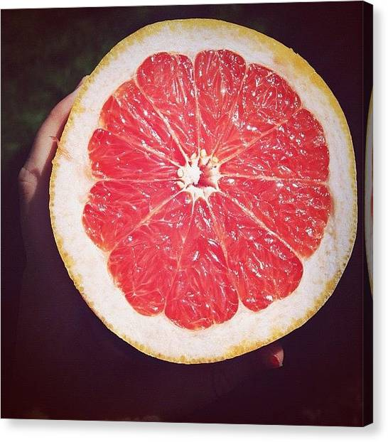 Grapefruits Canvas Print - #grapefruit #sommer #bei #omi #essen by Paula Rehberg