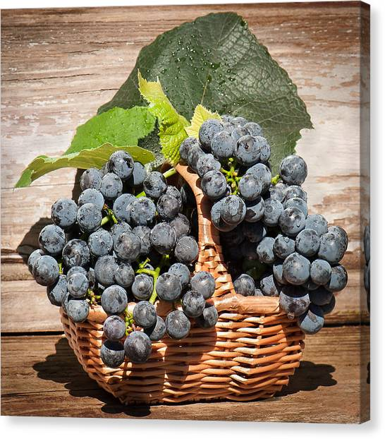 Grapes And Leaves In Basket Canvas Print