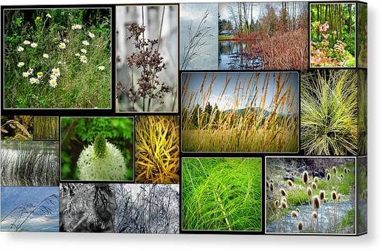 Grass Collage Variety Canvas Print