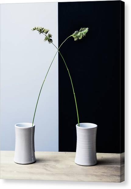 Grass Canvas Print - Grass by Humusak