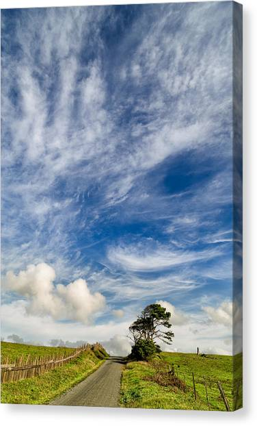 Bishop Hill Canvas Print - Grass Is Greener Beyond The Hill by Kathleen Bishop